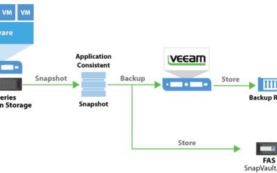 veeam backup from storage snapshot netapp