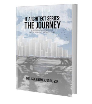 it architect book author writer