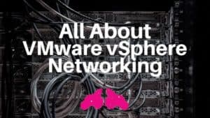 VMware vSphere networking port group vswitch